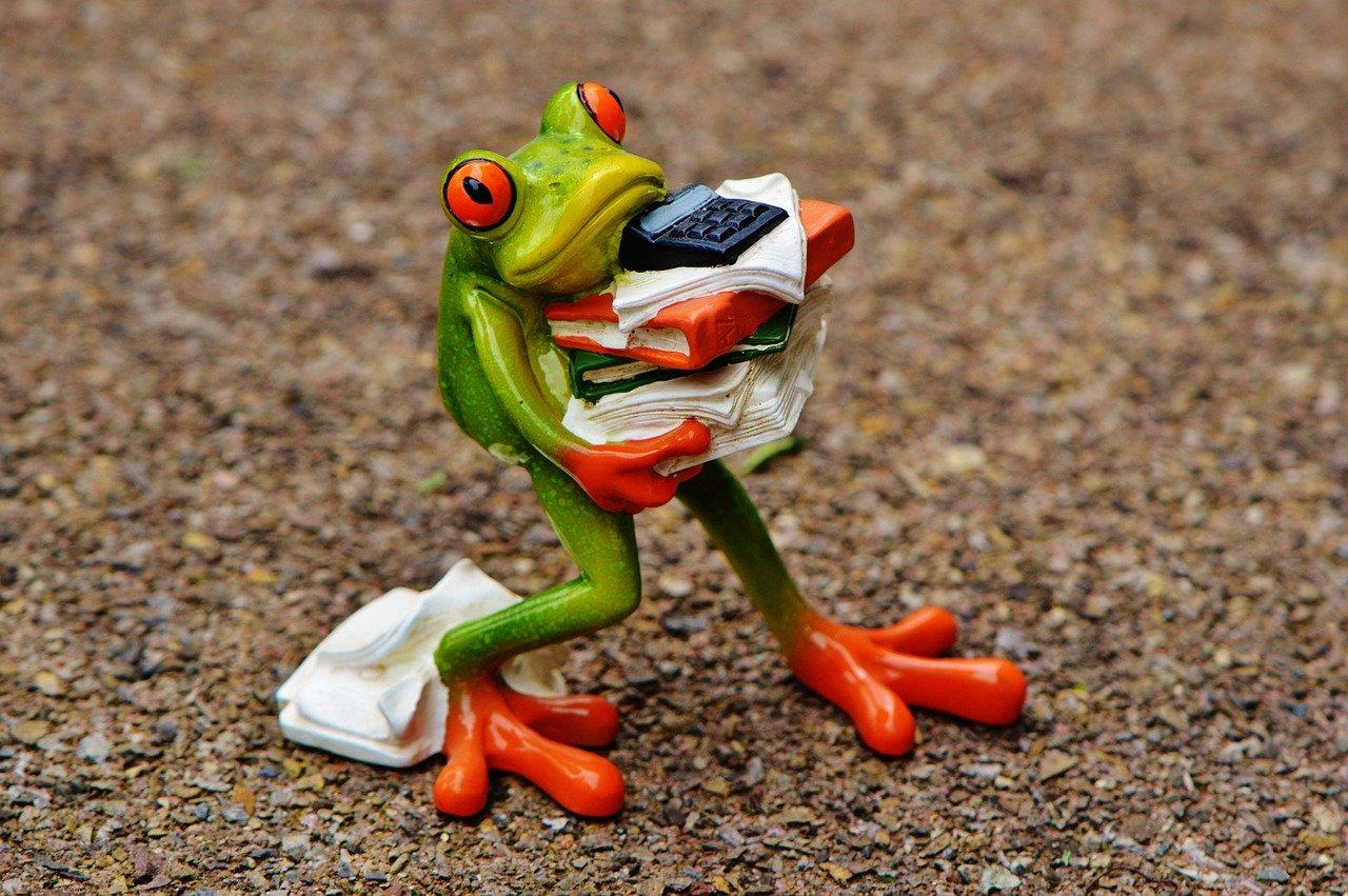 Akten Praxismietvertrag Frosch